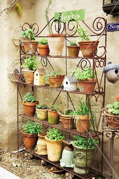 A steel shelf with different herbs 11091149 Images – Buy unique interior design photos Garden Rack, Garden Stand, Garden Pots, Indoor Garden, Balcony Herb Gardens, Small Gardens, Outdoor Gardens, Outdoor Bakers Rack, Small Yard Landscaping