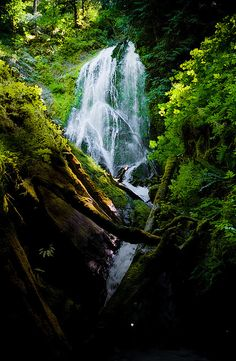 Upper Wolf Creek Falls. photo by Simple Insomnia