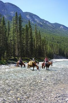 Horseback riding in the spectacular mountains of Banff National Park