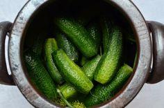 Johannes Wätterbäck o Theres Lundén odlar grönsaker överallt. På bloggen Farbror Grön delar de med sig av sina bästa trädgårdstips.