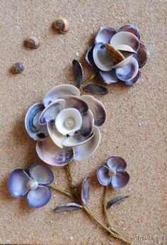 Seashell crafts // make art // flowers // beach // sea // shells // ocean /: waterIron peg and glue the shells on it Source by arts.She'll flowers for box frames!Picture of shells – Dina Yakovenko - Crafts Sea Crafts, Nature Crafts, Crafts To Do, Crafts For Kids, Diy For Kids, Craft Kids, Bible Crafts, Seashell Projects, Driftwood Projects