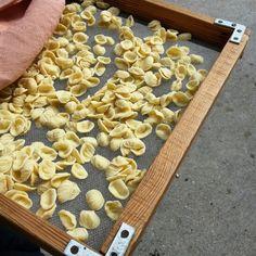 Orecchiette mie #ridieassapori  #igerspuglia #mypugliaexperience #igersbari #weareinpuglia #italiasocial #italia365 #whatitalyis #expo2015 #foodiegeekdinner