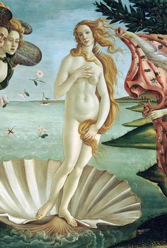 which is the basis for botticellis venus