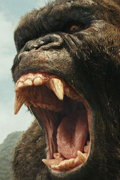 Here's Your Spoiler-Filled Reveal of What Happens in Kong: Skull Island