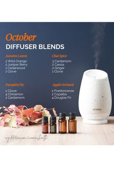 Celebrate the season with these October-inspired diffuser blends! Just plug in your diffuser and cuddle up with a warm blanket.