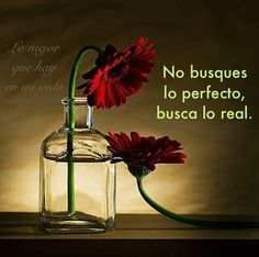 Lo real..