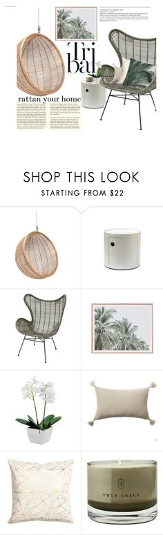 """""""Tribal Greenery Bring the Outside In!"""" by cielshopinteriors ❤ liked on Polyvore featuring interior, interiors, interior design, home, home decor, interior decorating, Ciel, True Grace, White Label and rattan"""