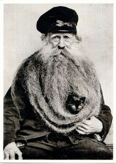 umm.....there is a cat in his beard......
