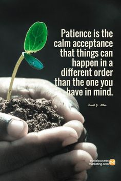 """Patience is the calm acceptance that things can happen in a different order than the one you have in mind."""