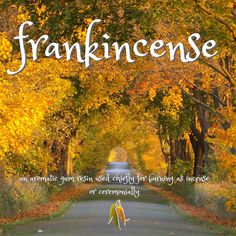 Beautiful words - frankincense - an aromatic gum resin Resin Uses, Beautiful Words, Vocabulary, Country Roads, Tone Words, Pretty Words, Beautiful Horses, Vocabulary Words