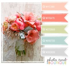 Color Crush Palette · 5.9.2012  from Photo Card Boutique Blog - Tutorials, Business Tips for Photographers by Angie