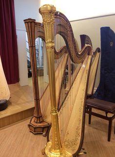 Hollywells  music showroom