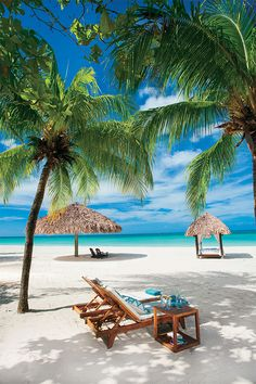 Fun Things to Do in Jamaica. In addition to Jamaica being the birthplace of Bob Marley and the fastest man in the world, it is also home to many natural Jamaica Vacation, Jamaica Travel, Vacation Places, Dream Vacations, Negril Jamaica Resorts, Jamaica Beach, Montego Bay Jamaica, Beach Resorts, Jamaica Honeymoon