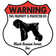 Better not come to my house looking for trouble, you will be meet with one of these beautiful animals. Beautiful Dog Breeds, Beautiful Dogs, Animals Beautiful, Standard Schnauzer, Giant Schnauzer, Terrier Dog Breeds, Terriers, Black Russian Terrier, I Love Dogs
