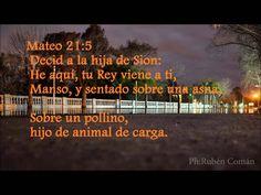9 12 LA BURRA DEL SEÑOR**una reflexion para realizar la obra de DIOS