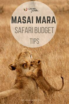 Masai Mara Safari on a Budget
