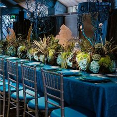 """""""An extraordinary under the sea themed Bar Mitzvah planned by featured rentals…"""" Wedding Decorations, Table Decorations, Centerpieces, Wedding Table Linens, Linen Rentals, Chair Covers, Bar Mitzvah, Design Consultant, Tiffany Blue"""