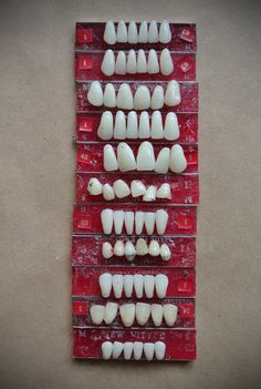 Vintage teeth on wax cards