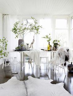 여름 청량제 같은 녹색 식물로 집안꾸미기 ! - sabotehn 싸이홈