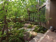雑木の庭の設計施工例なら高田造園設計事務所@千葉
