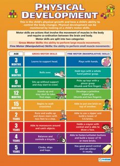 Physical Development | Child Development Educational School Posters