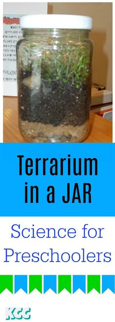 preschool science terrarium in a jar. Homeschool lesson Easy preschool science terrarium in a jar. Homeschool lesson -Easy preschool science terrarium in a jar. Science Experiments For Preschoolers, Science Activities For Kids, Cool Science Experiments, Preschool Science, Preschool Classroom, Science Lessons, Easy Science, Preschool Ideas, Science Toddlers