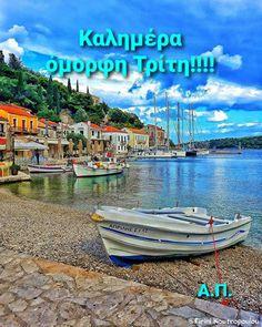Greek Beauty, Beautiful Pink Roses, Good Morning, Outdoor Decor, Buen Dia, Bonjour, Good Morning Wishes