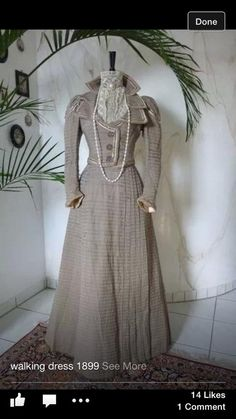 Walking Dress 1899