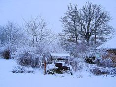 Limousin is wonderful in the snow! The garden at Les Trois Chenes looked a picture when it snowed in November last year. All the family pulled on boots and coats and went out for a winter walk around snowy Videix. http://les-trois-chenes.hubpages.com/hub/Walking-in-South-West-France-Videix-in-the-Snow