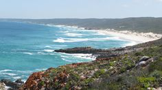 Along Whale Trail, De Hoop Nature Reserve Nature Reserve, South Africa, Countries, Followers, Whale, Hoop, Trail, Southern, Boards