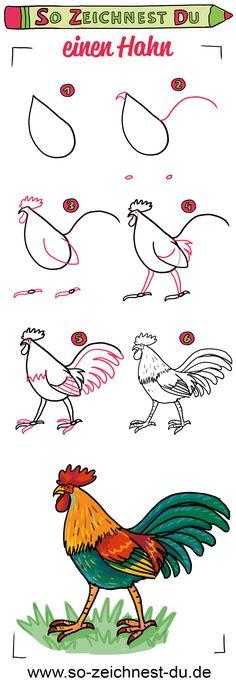 So zeichnest du einen Hahn. In unserer Zeichenschul-Serie zum Thema Bauernhof lernst du, wie man ganz einfach einen stolzen bunten Hahn zeichnen kann.