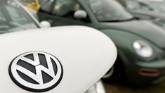 Volkswagen tested a diesel-cheating Beetle on 10 monkeys in 2014 - Autoblog