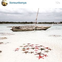 #FlavioBriatore Flavio Briatore: #kenya #lioninthesun #Billionaire resort posto magico