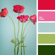 Color Palette Ideas | Page 5 of 385 | ColorPalettes.net