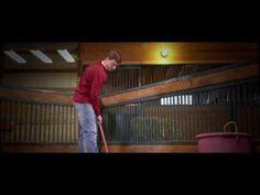Principles for Success   Weaver Leather Livestock #morethanthebanner #determination #weaverleatherlivestock