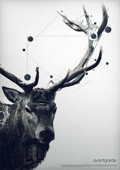 graphic design, poster, geometric, deer, elk
