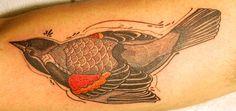 red winged blackbird ~ artist David Hale of Anchor Tattoo, Athens, GA #tattoo #body_art #bird