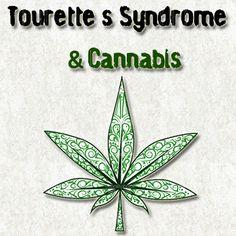 Cannabis and Tourette´s Syndrome | Medical Marijuana Blog