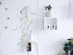 Gruß aus der Küche  Was hier bei uns in der Küche so herumhängt... . Vertical gardening also in my kitchen #newblogpost #onmyblog #linkinprofile . . #neuerblogpost #aufdemblog #direktlinkimprofil #easypeasyanklickbar #diy #doityourself #verticalgardening #hangingplants #urbanjunglebloggers #kitchen #onthewall #plants #louisianamoos #spanischesmoos #tillandsien #tillandsia #upcycling #spanishmoss #whiteinterior #germaninteriorbloggers #solebich #heimatecken #interiorblog #interior_and_living…