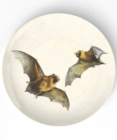 bats  I  10 inch Melamine Plate with softly aged by TheMadPlatters, $18.00