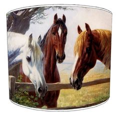 A Gathering of Horse