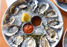 Freshly shucked oysters cool on ice.