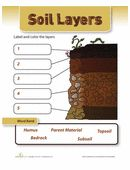 Quiz your little scientist on his knowledge of the soil layers! He'll be reviewing some important earth science concepts and key terms.