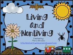 FREE mini lesson about living and nonliving organisms! * 2 large vocabulary cards * 1 cut, sort, and paste activity * 1 exploring the outdoors activity