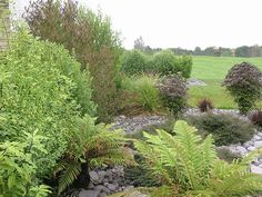 Dry River Bed Garden. Landscaping by NZLANDSCAPES.COM. | Flickr - Photo Sharing!