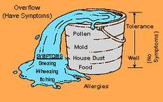 bucket theory eczema shampoo