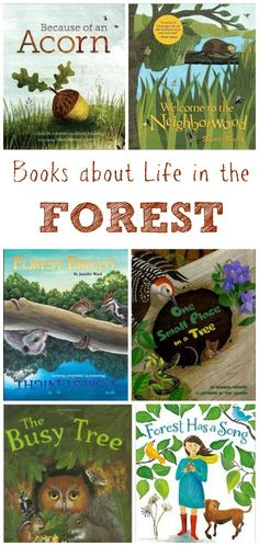 Kids Books about Life in the Forest - perfect for nature activities, forest school or STEM projects!
