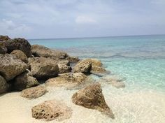 Blue Lagoon Island in Nassau, Bahama. Ranked #2 attraction in Nassau, 4.5 for 821 Reviews