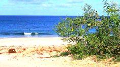 #Kapverden #Urlaub auf #BoaVista (schöner Ausblick) oder der #Insel #Sal (Insel des Salzes) gilt als gewisser #Geheimtipp unter den neuen #Reisezielen der Deutschen. Auf Grund der veränderten Sicherheitslage an bekannten #Reisezielen müssen sich viele #Urlauber neu orientieren Das können Sie hier ganz einfach. Gleich online zu besten Preisen den nächsten #Urlaub buchen www.BoaVistianer.de