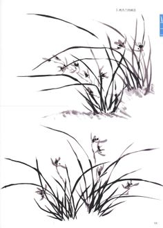 Четверо Благородныых (Четыре Джентельмена) в китайской и японской живописи - Дикая Орхидея
